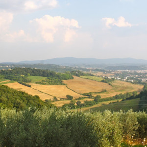 Adventures In :: Italy – Wine Tasting in Chianti