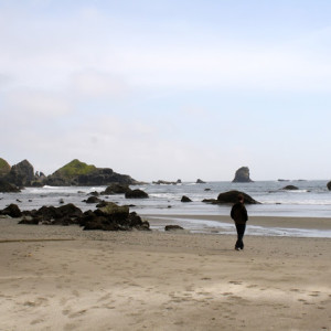 Adventures In :: Oregon – The Coast and Rogue Jet Boating