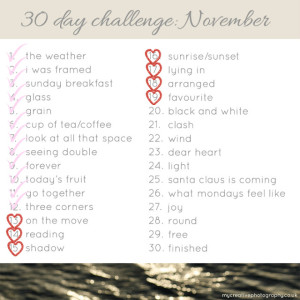 November Photo Challenge #3