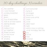 November Photo Challenge #5