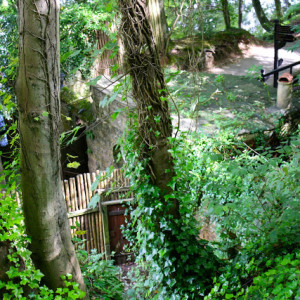 Day Tripping :: Knaresborough and Mother Shipton's Cave